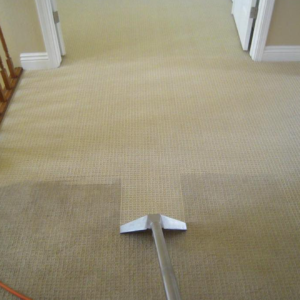 Carpet Cleaning 3 Rehoboth DE